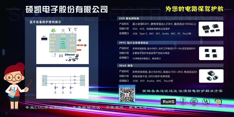 2021深圳蓝牙耳机研讨会耳机展背景墙cmykok - 副本.jpg